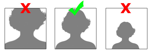 Sage ID Photo Examples