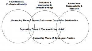 Occupational Therapy Curriculum Graphic