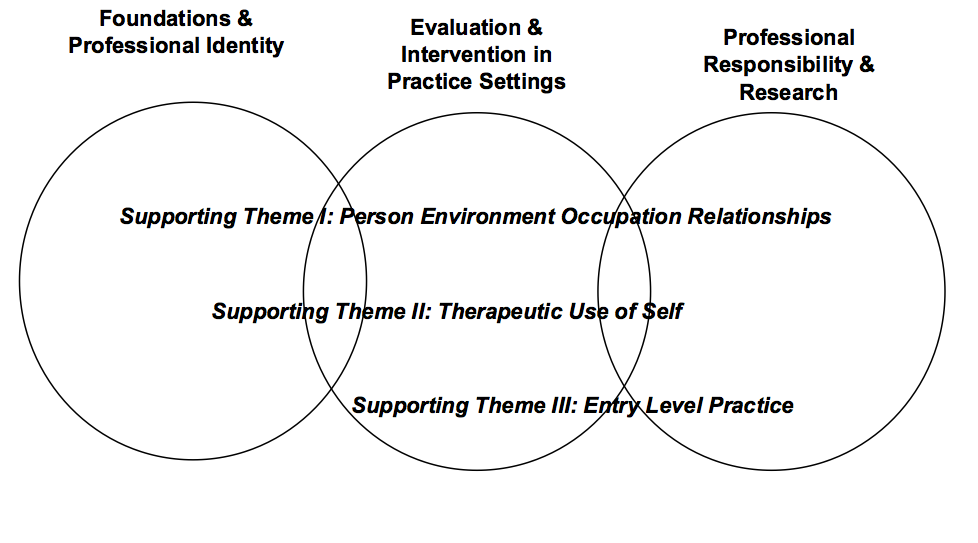 Occupational Therapy Curriculum | The Sage Colleges