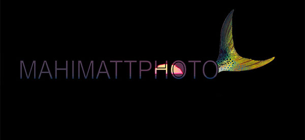 Mahi Matt Photo Logo