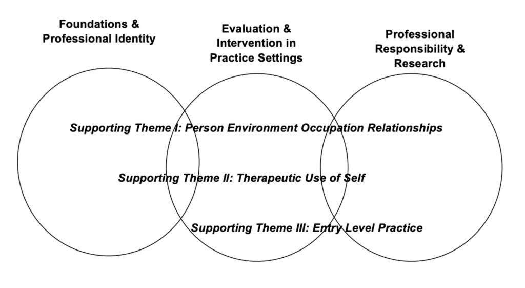 MSOT curriculum Venn diagram