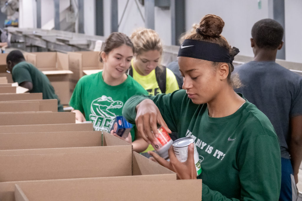 Sage Engaged at the Food Bank in 2019